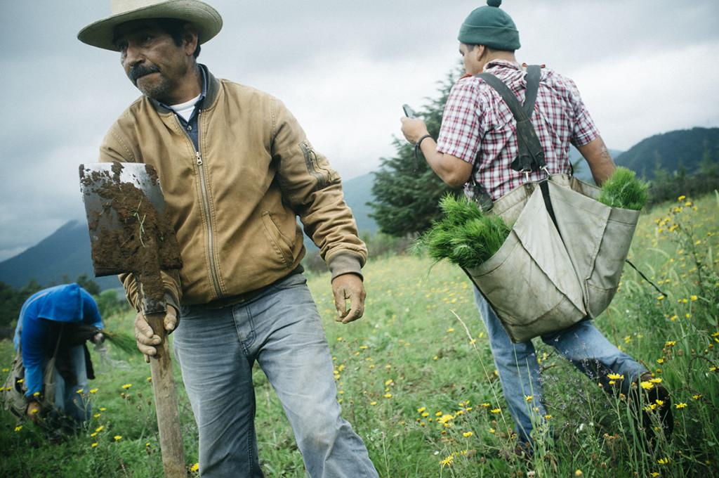 Cherán K´eri: un pueblo de la Meseta Purépecha en resistencia. Foto: Scott Brennan