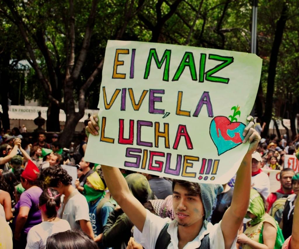 Manifestación contra Monsanto. Foto: internet